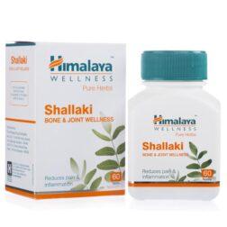 Himalaya shallaki