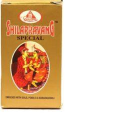 Dhootapapeshwar Shilapravang Special